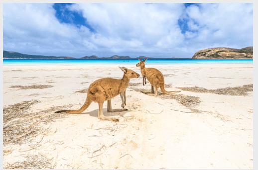Western Australian Skilled Migration Occupation List