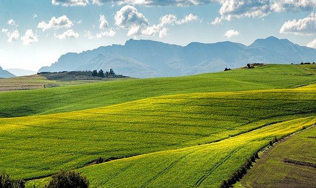 AGRICULTURAL SCIENTIST VETASSESS SKILLS ASSESSMENT