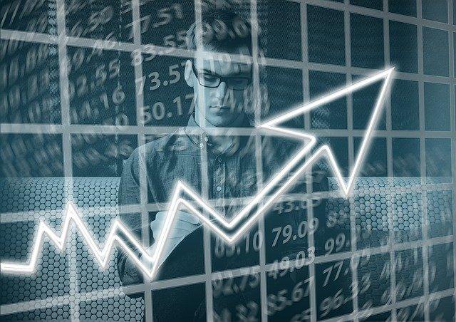 VETASSESS SKILLS ASSESSMENT ICT BUSINESS DEVELOPMENT MANAGER